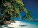 Доминикана. Пляж